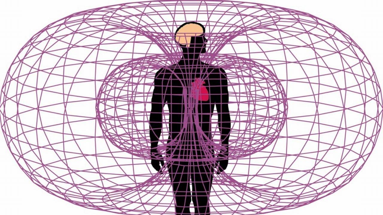 campo magnético corazón
